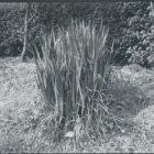 trienale-profili_1991-7.jpg