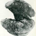 9.jugo-bienale-male-plastike_1989.jugo-trienale-male-plastike_1989-55.jpg