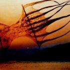 cvetnic_1991-7.jpg
