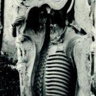 equrna_1983-5.jpg