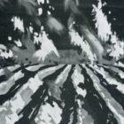 koloristi_1987-2.jpg