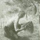 likos_1993-5.jpg