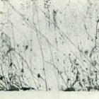 panonia-89.jpg