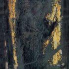 rajnar_1999-8.jpg